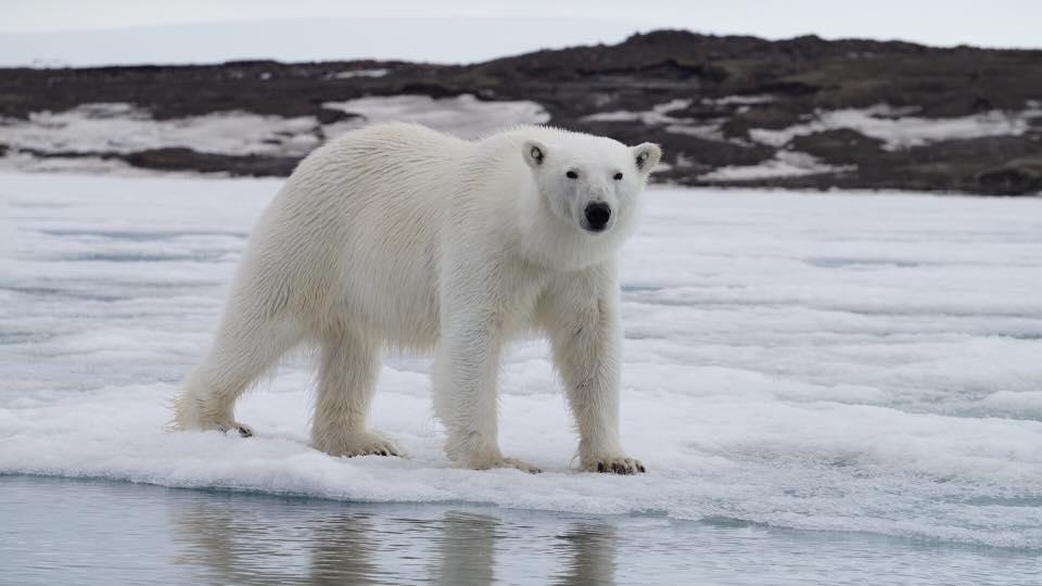 Svalbard – Norway
