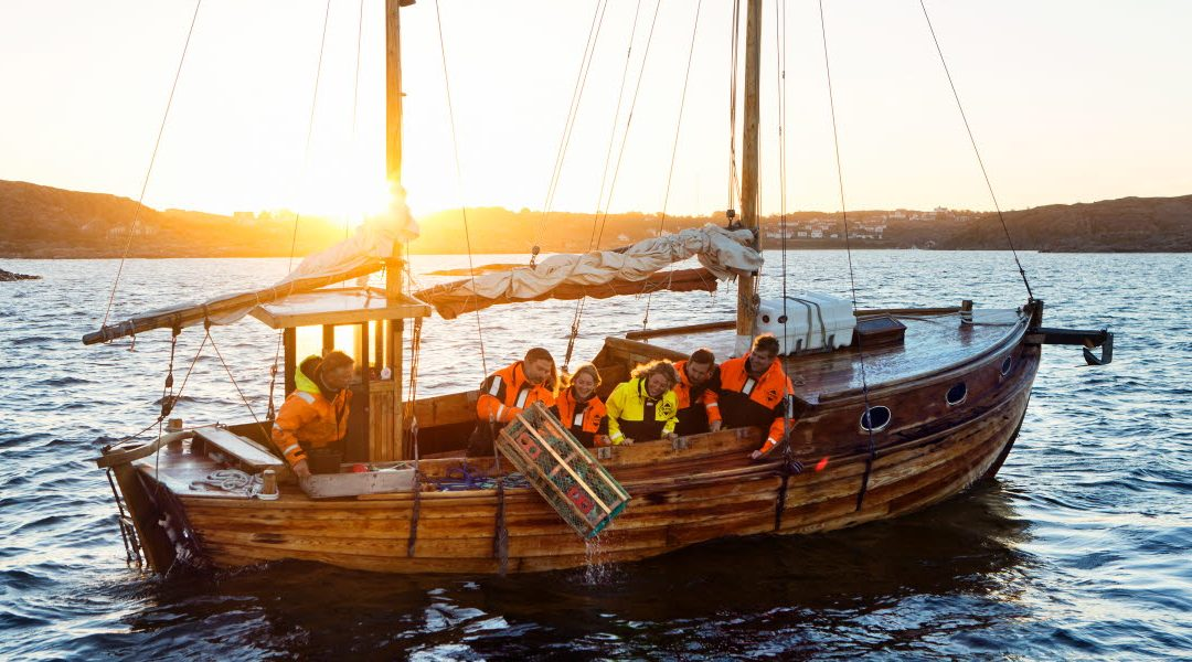 THIS AUTUMN'S SEAFOOD SAFARI DEALS IN BOHUSLÄN